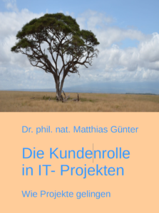 Die Kundenrolle in IT-Projekten